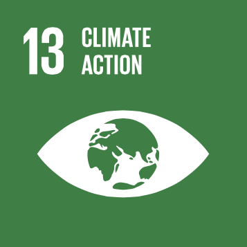 Sustainable Development Goal #13
