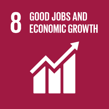 Sustainable Development Goal #8